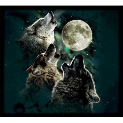 Пенал Волк 2
